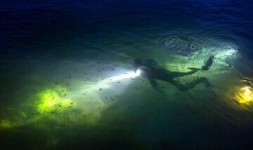 padi-night-diver-specialty-course-koh-tao-640x380