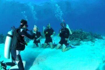 1_open-water-diver