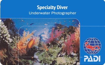 underwater-photographer-course-roatan-coconut-tree-divers-dive-shop